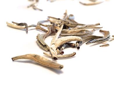 Silver Needles.jpg