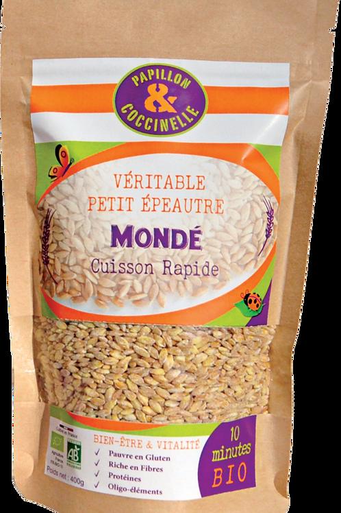CARTON 20 PAQUETS/400g/Véritable Petit Epeautre MONDE