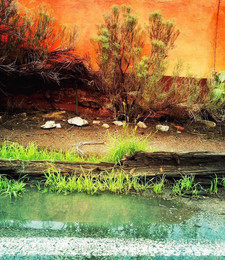 """""""Color layers on a Madrid roadside after monsoon rain"""" Margaret Cushing"""