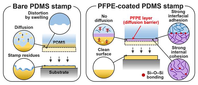 PFPE-coated PDMS stamp 전사공정
