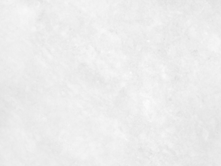 1908CDB7-C694-4885-9EC0-35681E0B1F30.jpeg