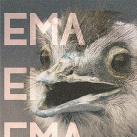 Poster EMA