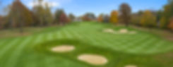 Golf course grass leaves bunker sand mint photo