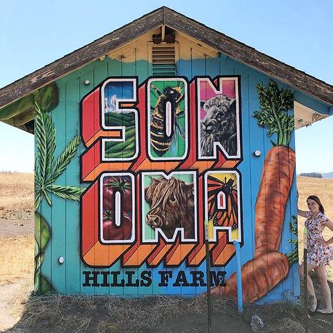 Sonoma Farm Mural.JPG