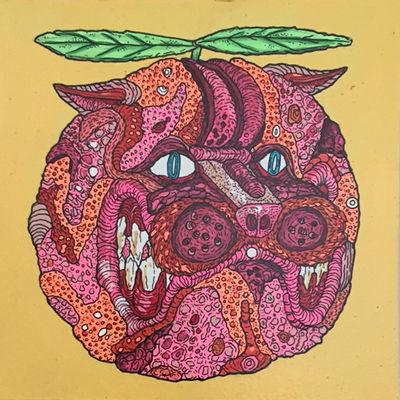 Maxfield_Bala_Grapefruit_web.jpg