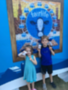 Fairlife Milk Activation.png