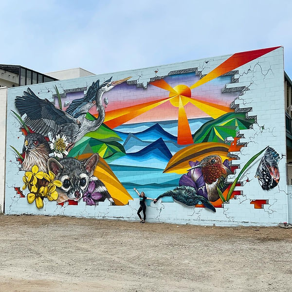 3d Effect Murals