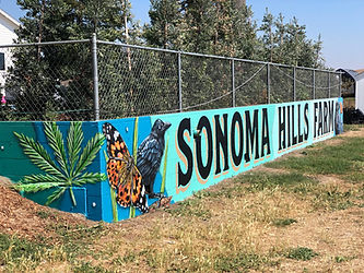 Cannabis Mural