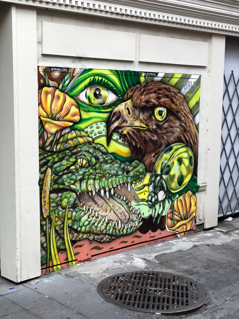Petaluma Downtown Mural.JPG