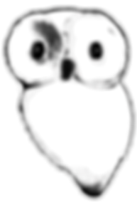 Owl_edited.png