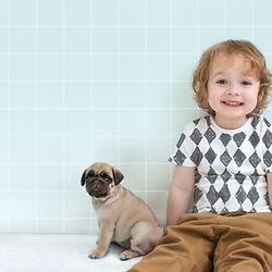 パグの子犬と少年