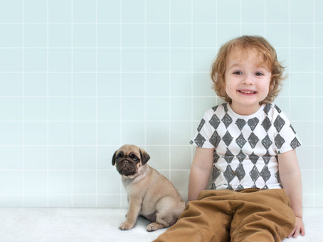PET BFF'S - HELPING DOGS GET ALONG WITH YOUNG CHILDREN