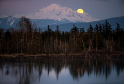 Pink Moon Cresting over Mt Baker