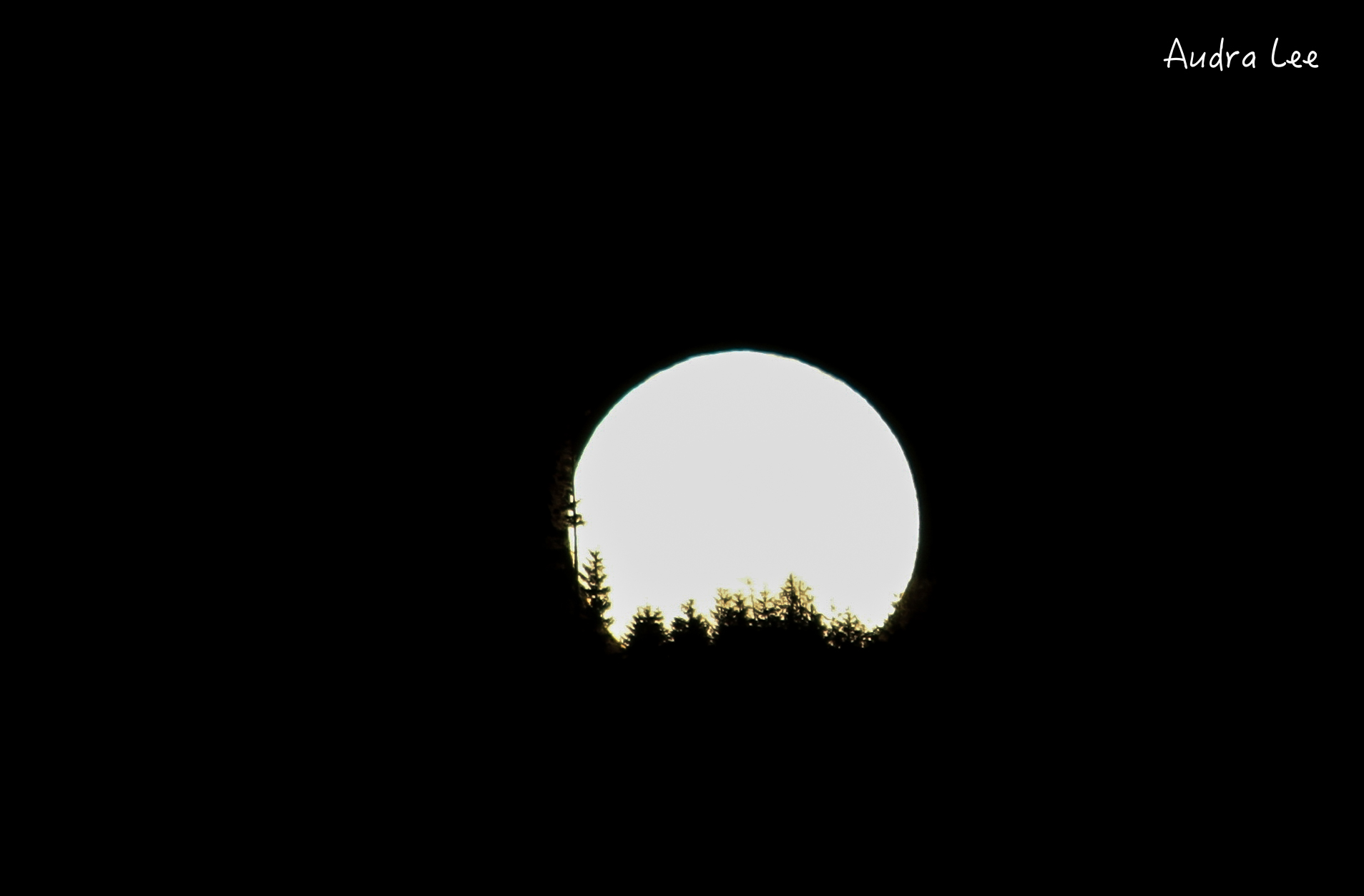 Winter Moon in Whatcom County