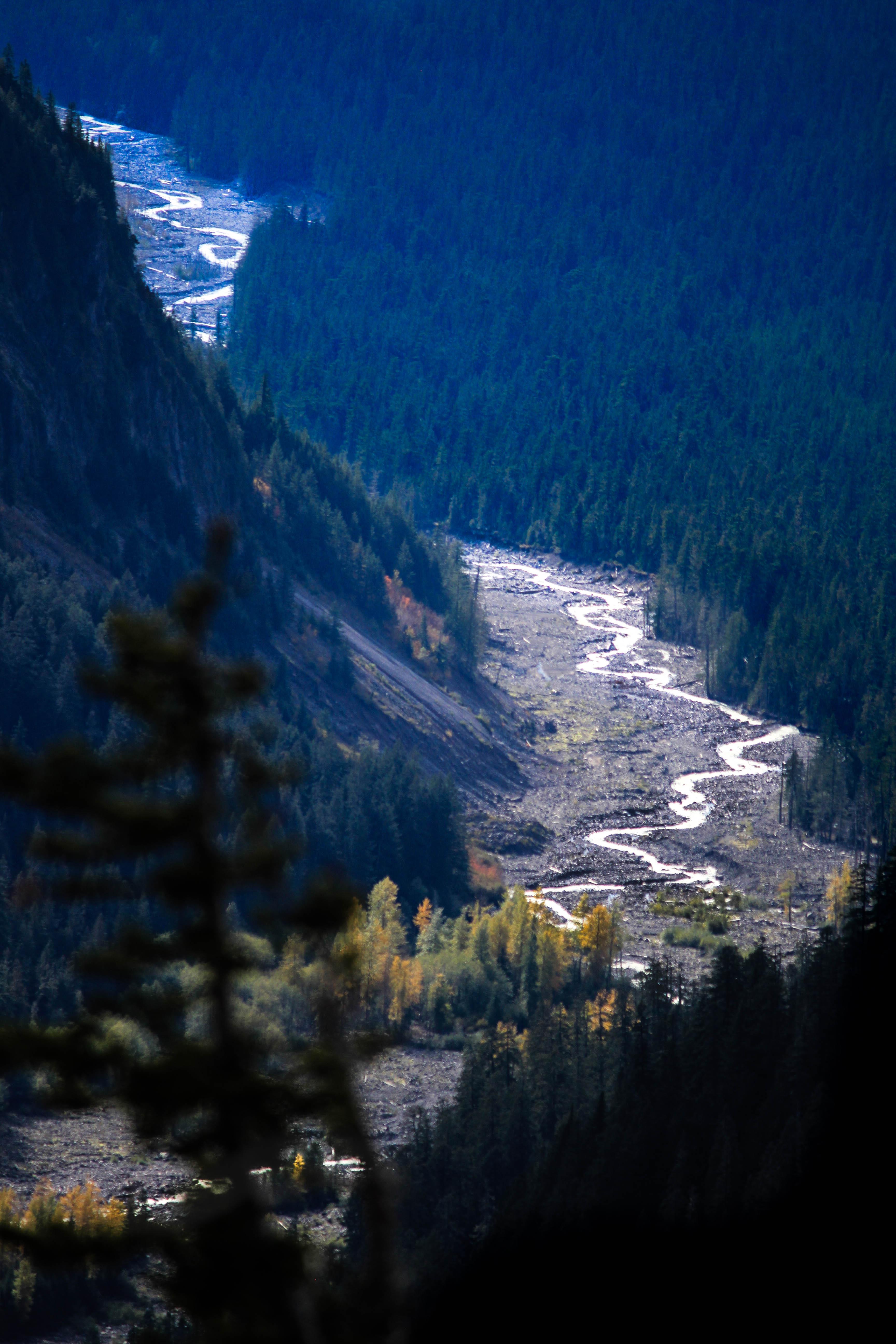 Nisqaully Flowing, Mt Rainier