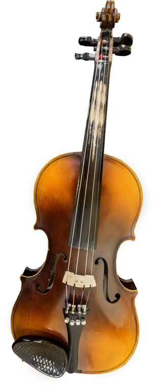 THE VIOLIN IN MY LIFE