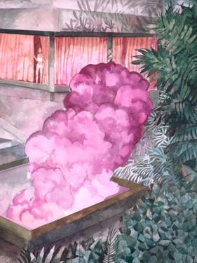 Pink Smoke2.jpg