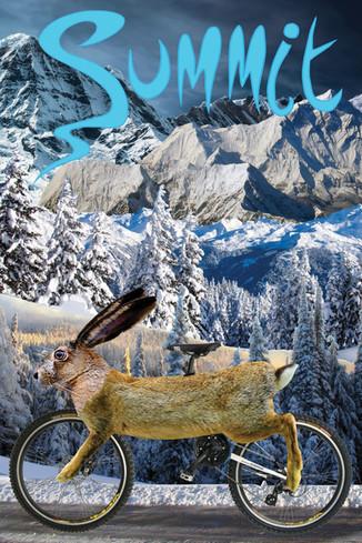 Summit Ski & Cycle - Rabbit Poster