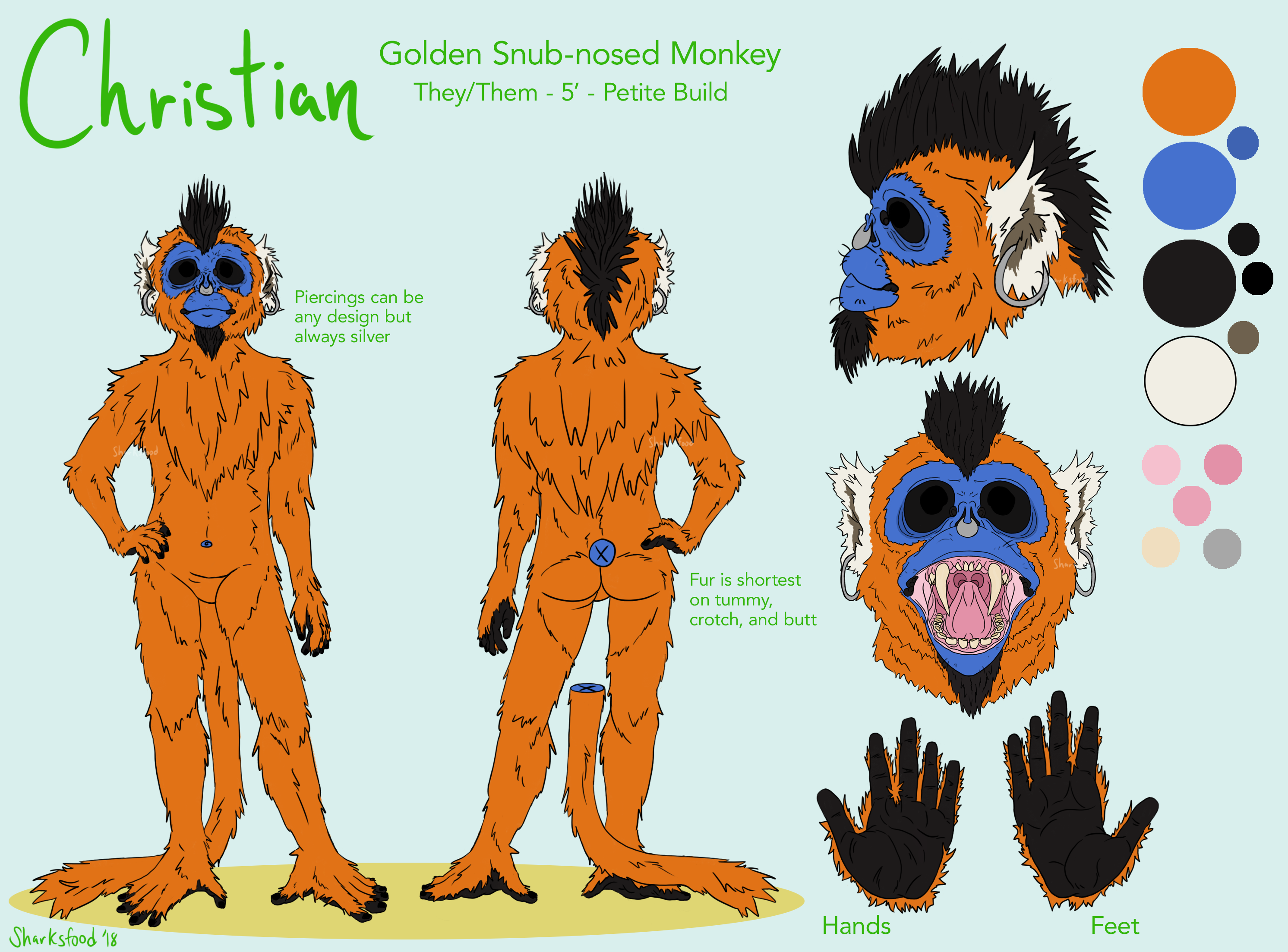 Christian the Monkey