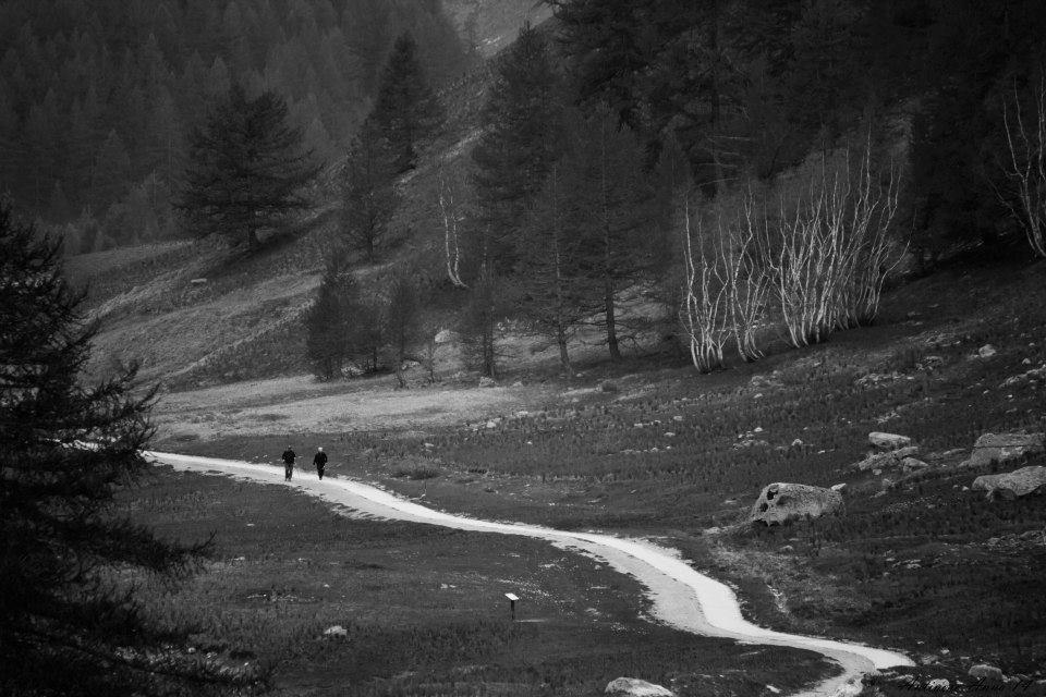 Questa foto l'ho scattata anni fa durante una camminata in montagna e credo che rappresenti molto bene il concetto di cui vi sto parlando.