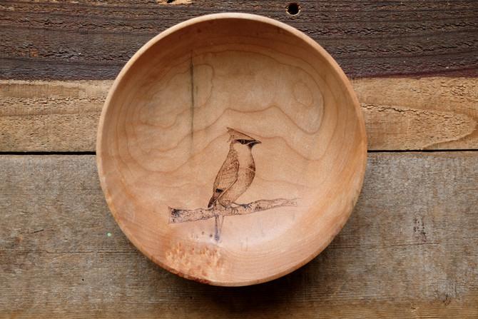 Cedar Waxwing  #2129