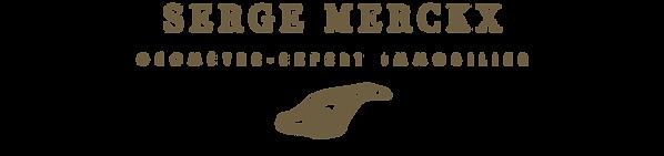 Logo V6.3.png