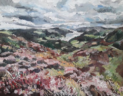 Holme Fell, Coniston