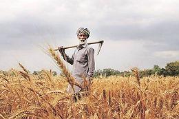 FARMERS' BILLS - Criticism