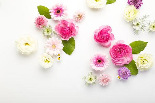 flower201261772_TP_V.jpg