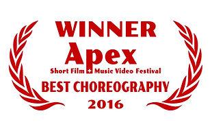 apex winner.jpg