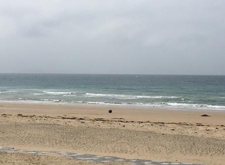 風が西から北東に変わり徐々に強くなってきました、波もまだスネサイズですがこれから少しアップ予報なので期待です。