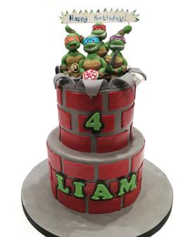 2 Tier TMNT Cake