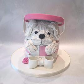 Dog in a Box Cake