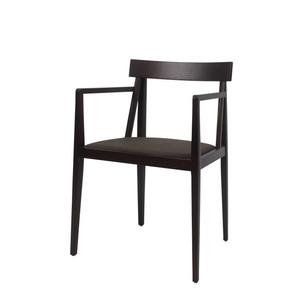 Astras arm chair (1)