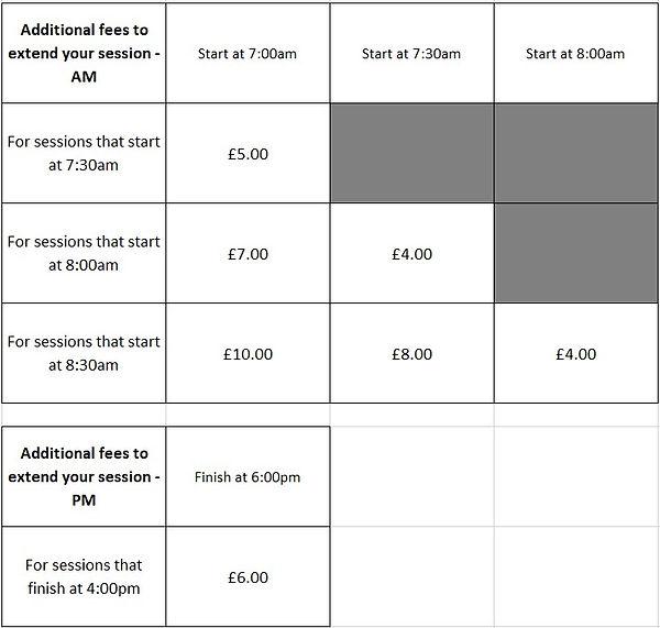 Additional fees.jpg