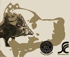 élevage dogue argentin