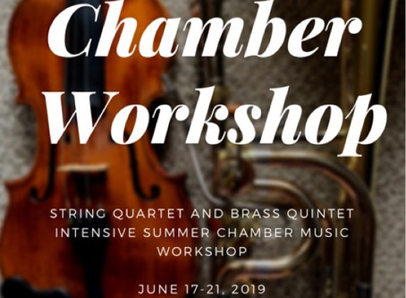 AMS Chamber Workshop 2019