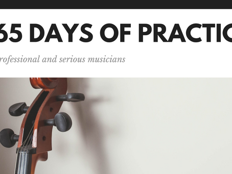 New, for professional and serious musicians: 365 Days of Practice