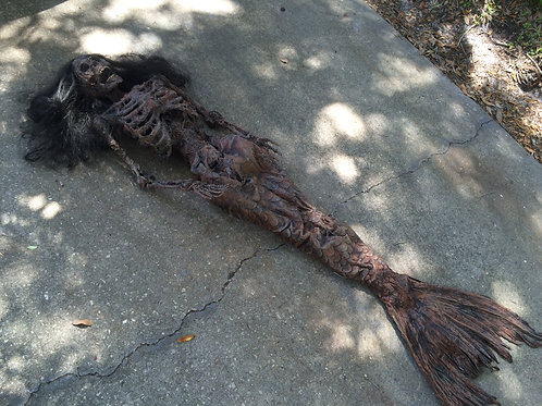 Mummified Mermaid