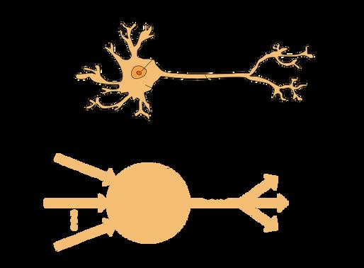 Perceptron — Deep Learning Basics