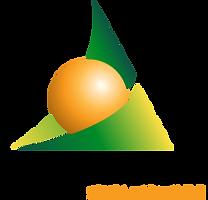 logo anpros.png