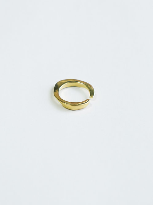GD WAVEPLATE RING
