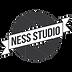 Ness Studio Photographe à Léognan