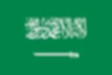 サウジアラビア.png