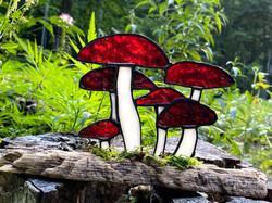 Stained glass mushrooms on driftwood