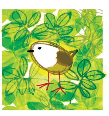 grønn-fugl