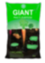 Giant MP fert 2.png
