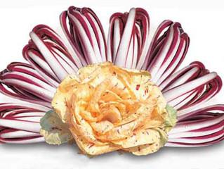 Radicchio: il fiore d'inverno