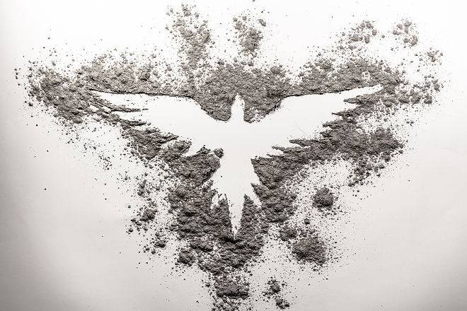 Phoenix drawing made in ash on a white b