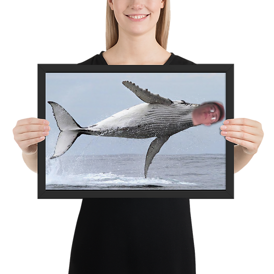Majestic Whale Petey Framed Poster